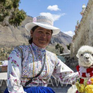 _E3A6188_Peru_Colca Tal_Frau mit Alpaca