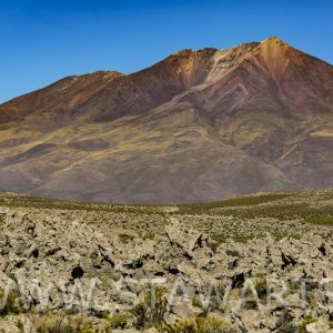 _E3A7684_Bolivien_Salar de Uyuni_Steinarmee