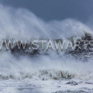 _E3A9411_Island_Vik_Wird Sturm ernten